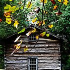 View of the old shack at Mabry Mill, Virginia by Melinda Watson