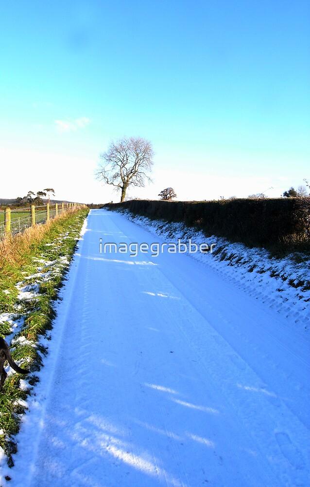 snow scene by imagegrabber