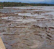 A Flooded Lake Burley Griffin. by shortshooter-Al
