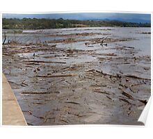 A Flooded Lake Burley Griffin. Poster