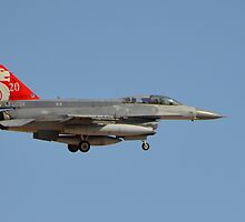 Republic Of Singapore Air Force F-16 Fighting Falcon by Eleu Tabares