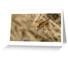 81515 dragon Greeting Card