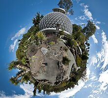 Mt Cootha Botanic Gardens - Wee Planet by jezza323