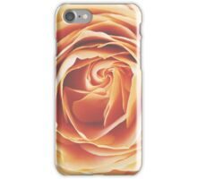 peach rose, dramatic  iPhone Case/Skin