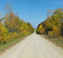 Journeys Down Ole' Country Backroads by Les Wazny