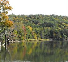 Mountain Lake Pano- Fall 2008- Meaford Ontario Canada. by Les Wazny
