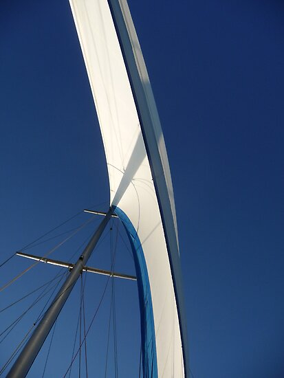 Wind in the sails by DEB CAMERON
