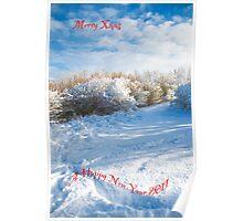 Merry Xmas & Happy New Year Poster