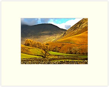 Autumn in Wasdale - Lake District by Trevor Kersley