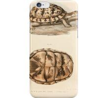 Joseph Fitzinger 1867 0167 Picture Atlas for popular scientific natural history of vertebrates iPhone Case/Skin