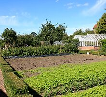 English Walled Garden by Chris L Smith