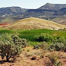 View No. 6 Painted Hills - John Day Fossil Beds National Monument, Grant County, OR by Rebel Kreklow