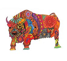 Bright Beautiful Buffalo! Photographic Print