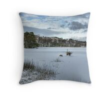 The Icy Dam Throw Pillow