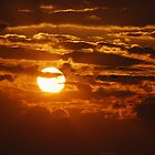 As the Sun Sets in Southeast Missouri by barnsis