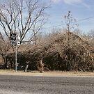 Duffau, Texas, RFD by Susan Russell