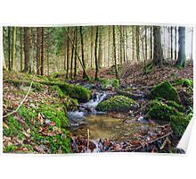 Little creek in the Belgian Ardennes in HDR Poster
