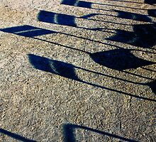 Paris - Dancing chairs shadow... Lhasa's Small song by 1more photo