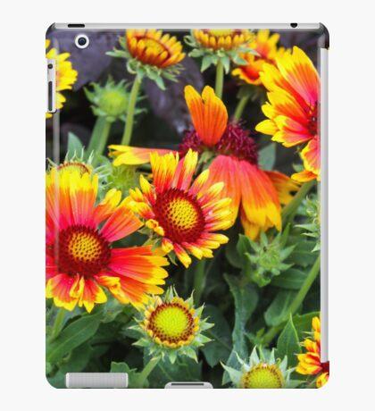 Exploding Petals iPad Case/Skin