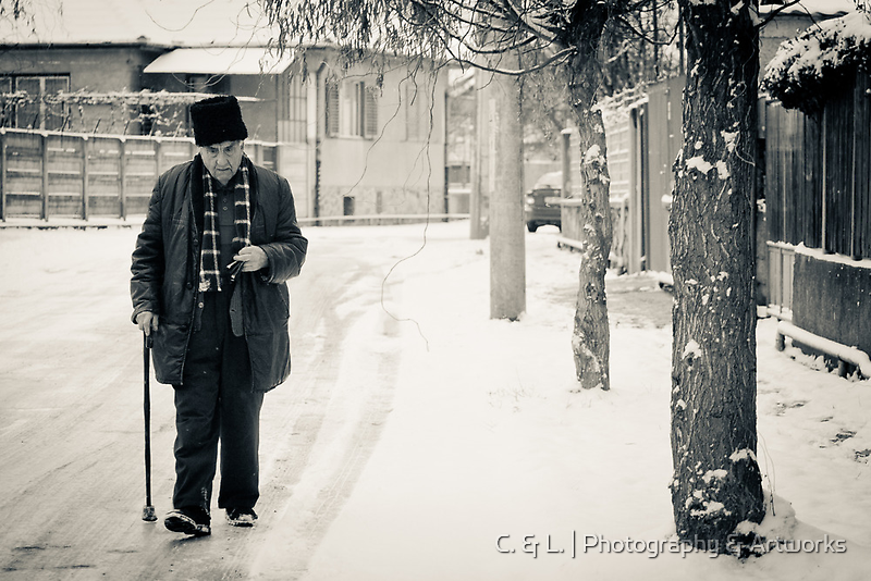 OnePhotoPerDay Series: 344 by L. by C. & L.   ABBILDUNG.ro Photography