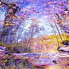 Enchanted Forest by NatureGreeting Cards ccwri