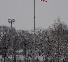 I Pledge Allegiance... by Jeff VanDyke