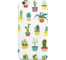 Succulents iPhone Case/Skin