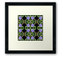 Vinca (Periwinkle) - In the Mirror Framed Print