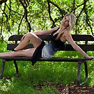On the Bench by Malcolm Katon