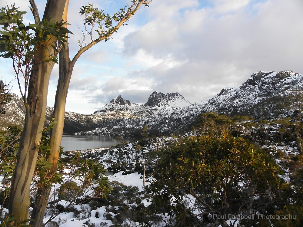 Cradle Mountain - cloudy day 2 by Paul Campbell  Photography