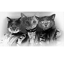 The Three Catfield Sisters Photographic Print