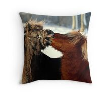 Never look a gift horse in the mouth Throw Pillow