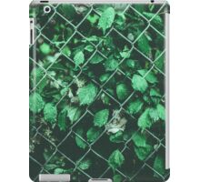 The Day I Watched Myself across the Fence iPad Case/Skin