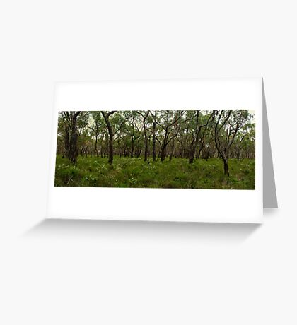 Anglesea Heathland Greeting Card