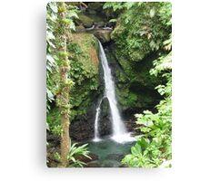 Jaco Falls, Dominica, Caribbean Canvas Print