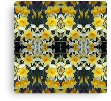 Daffodils - In the Mirror Canvas Print