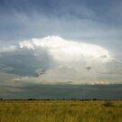 Thunderhead by David Haworth