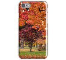 Autumn Walk In The Park iPhone Case/Skin
