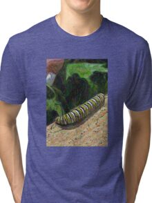 Monarch Caterpillar - Garden Days Tri-blend T-Shirt