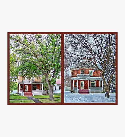 Two Seasons Photographic Print