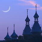 """Crescent Moons"" - University of Tampa Minarets by John Hartung"