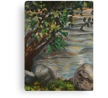 Saluda River by Gervais Canvas Print