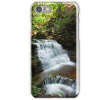 Mohican's Upper Tier iPhone Case/Skin