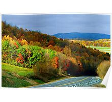 Fall Colors In The Back Mountain Poster
