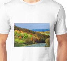 Fall Colors In The Back Mountain Unisex T-Shirt