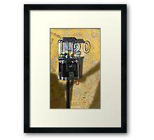 Beggin' Post Framed Print