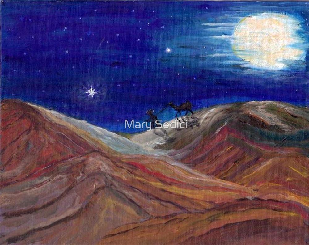 Arabian Night by Mary Sedici
