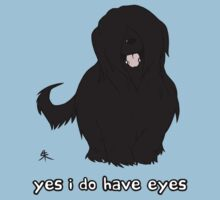 Black Briard - Yes, I have eyes. w/ TEXT by Shukura