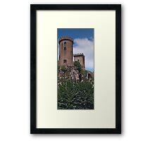 Chateau de Foix Framed Print
