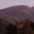 Chateau de Quéribus by WatscapePhoto